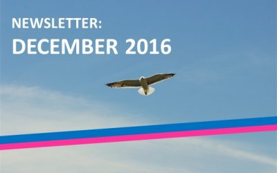 The first edition of the BTSA monthly newsletter: December 2016
