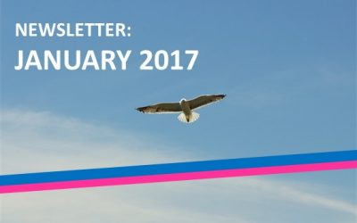 The second edition of the BTSA montly newsletter: January 2017