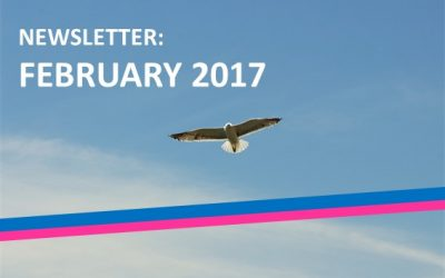The third edition of the BTSA monthly newsletter: February 2017