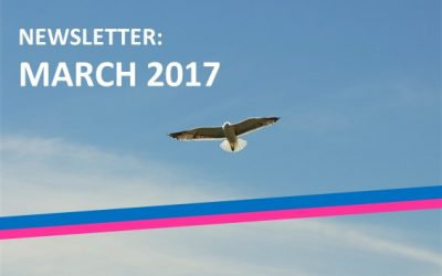 The fourth edition of the BTSA monthly newsletter: March 2017