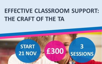 Effective Classroom Support: The Craft of the TA